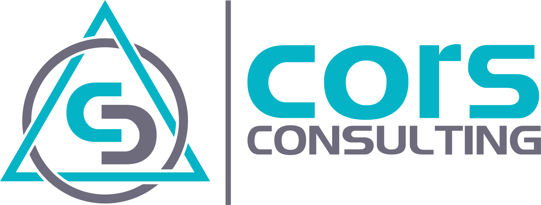 Cors Consulting
